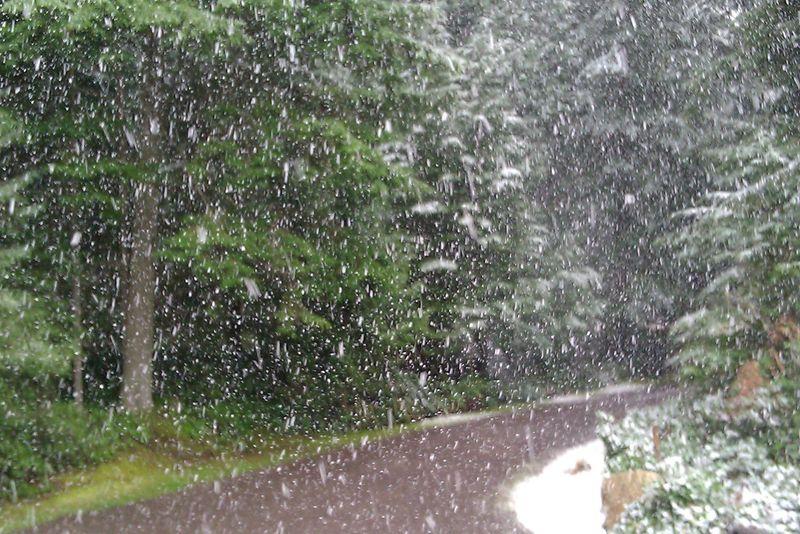 Snow falling 1.13